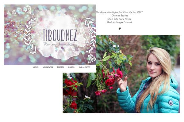 JOTT sur le blog Tiboudnez